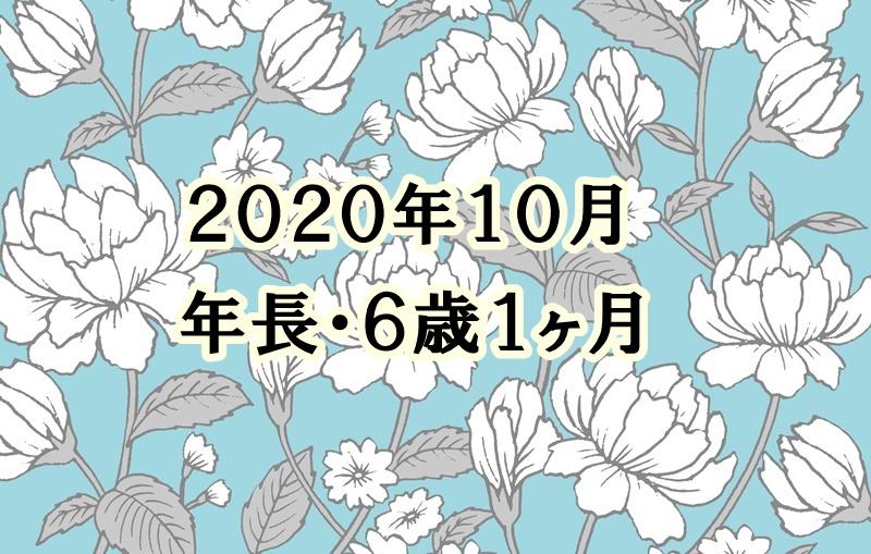 f:id:lily03:20201103075629j:plain
