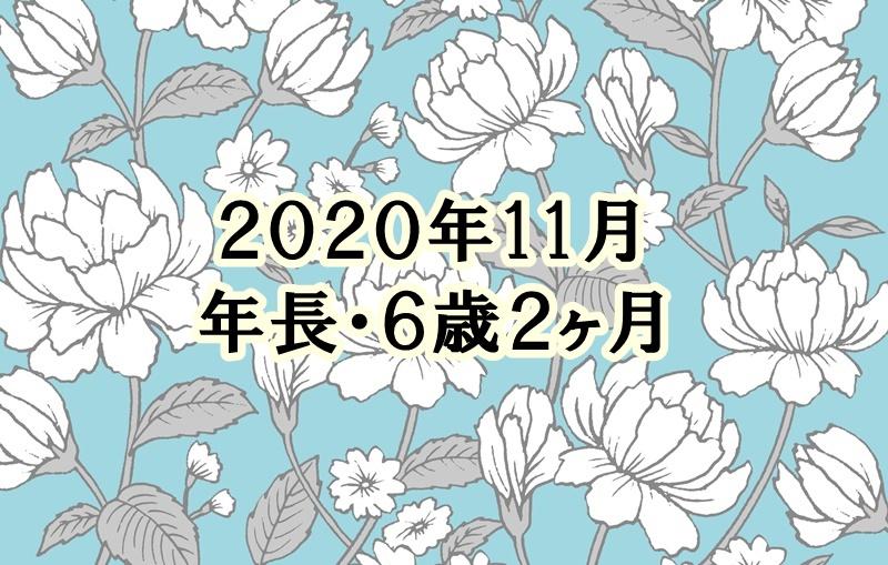 f:id:lily03:20201201052338j:plain