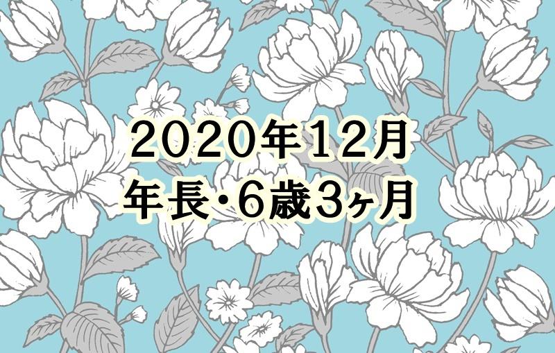 f:id:lily03:20201230072413j:plain