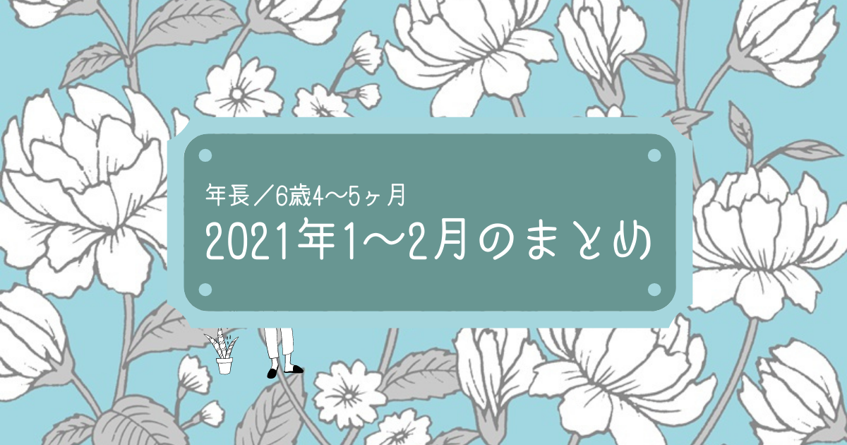 f:id:lily03:20210227235652p:plain