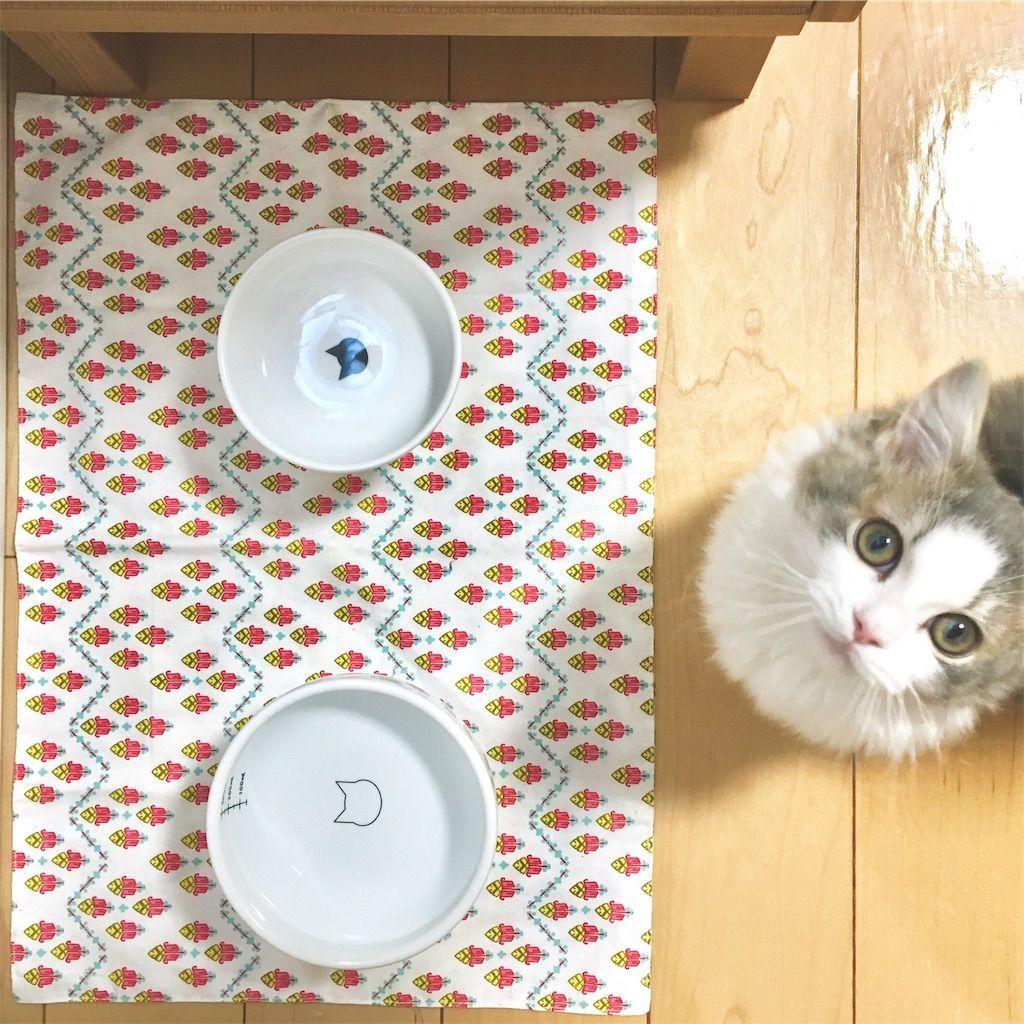 子猫と猫壱の脚付フードボウル&脚付ウォーターボウル