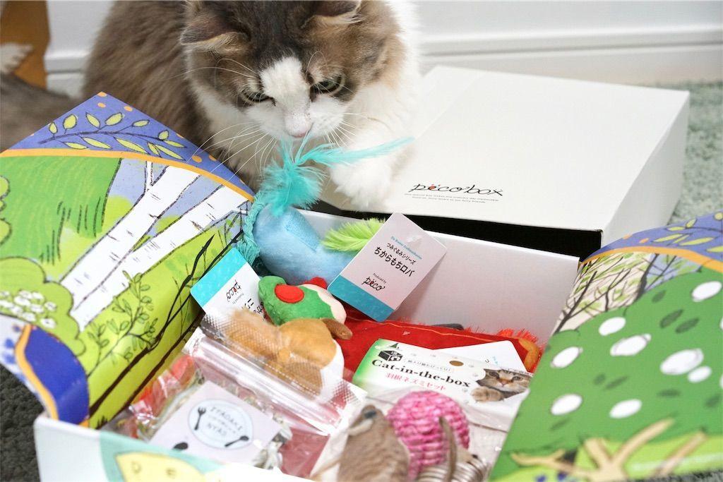 『PECOBOX for Cats ブレーメンの音楽隊』の中身