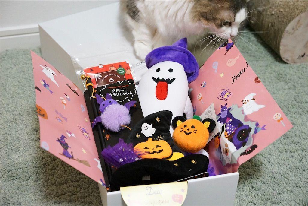 PECOBOX for Cats ハロウィン特別号の中身2