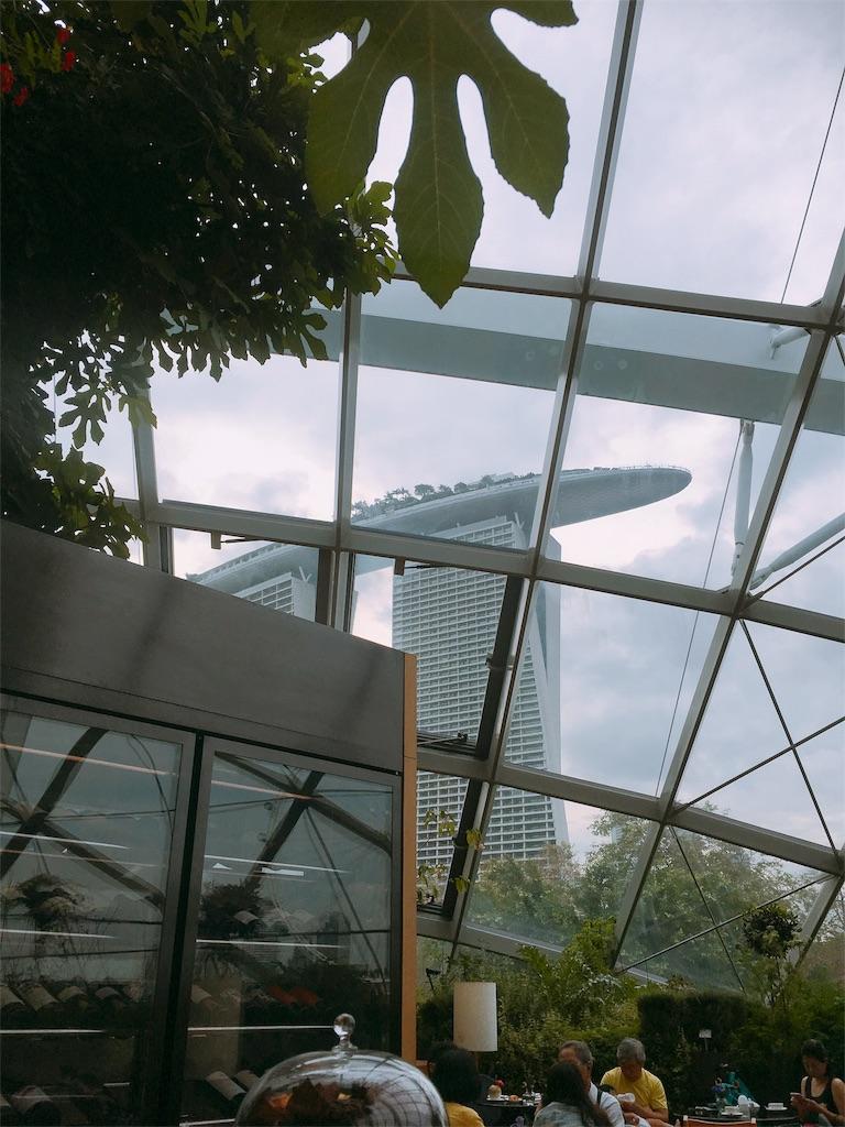 f:id:lily_singapore:20161031011104j:image