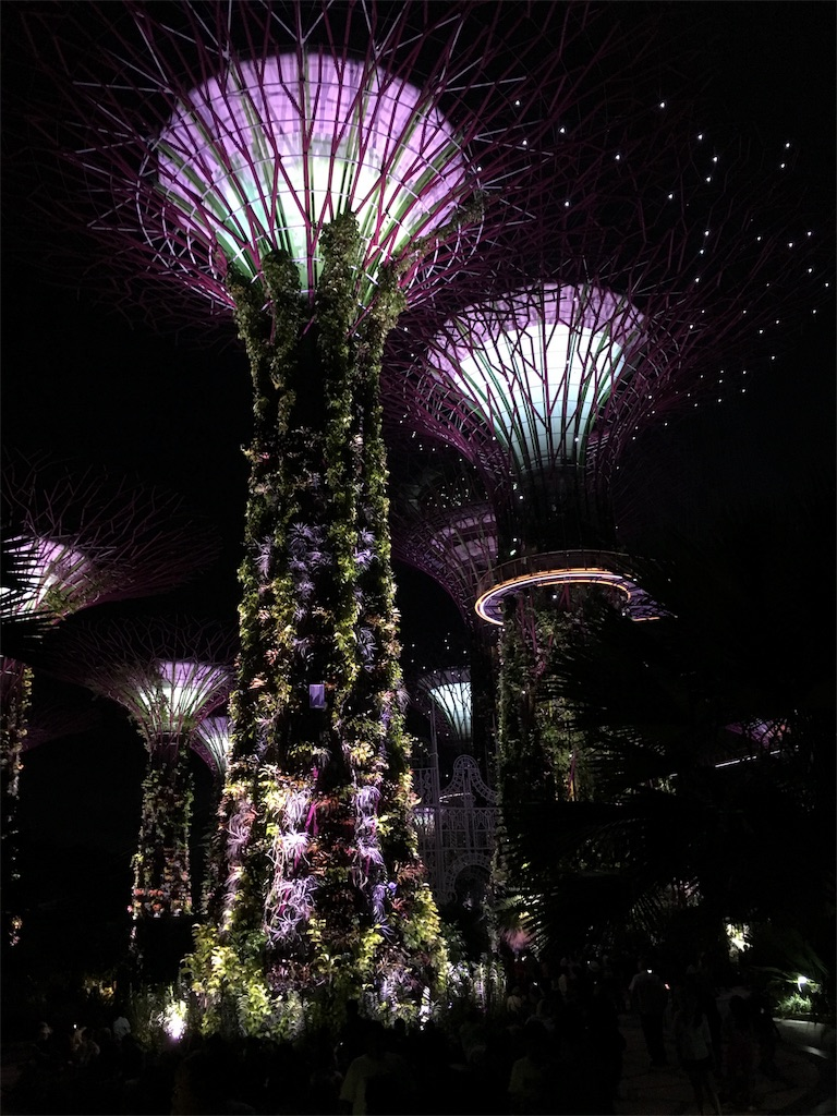 f:id:lily_singapore:20161113225041j:image