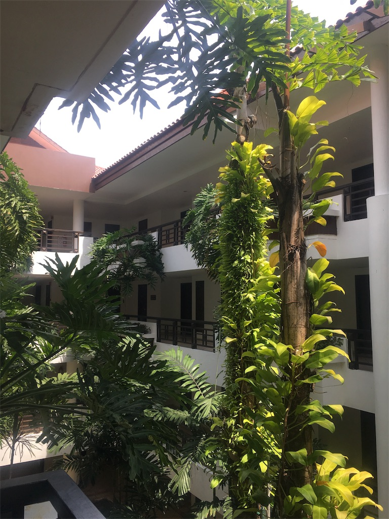 f:id:lily_singapore:20170227012736j:image