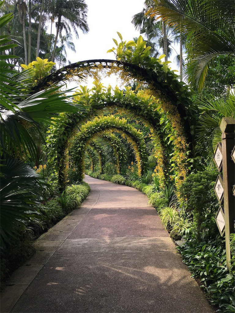 f:id:lily_singapore:20170410212144j:image