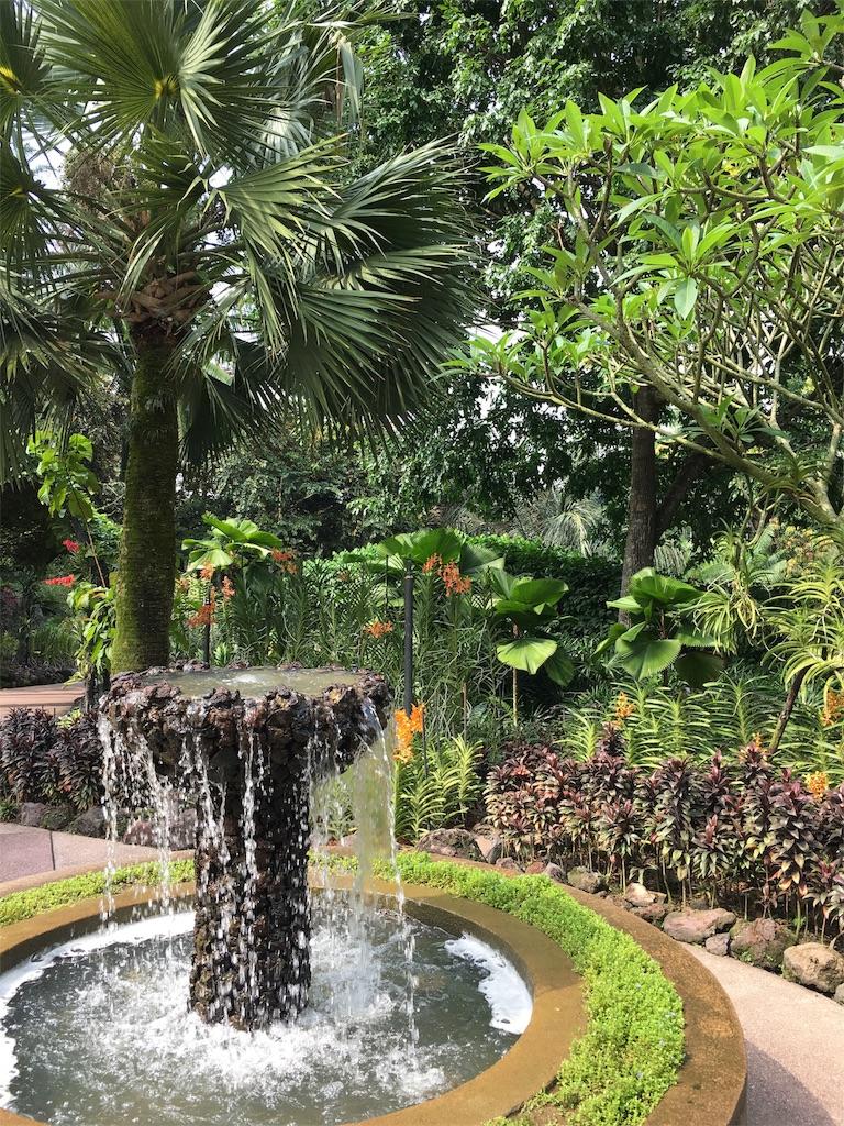 f:id:lily_singapore:20170410212151j:image