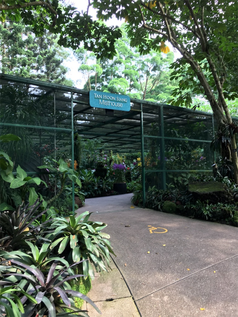 f:id:lily_singapore:20170410212210j:image