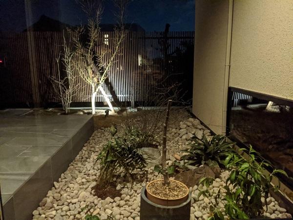 和庭園 イロハモミジ 照明