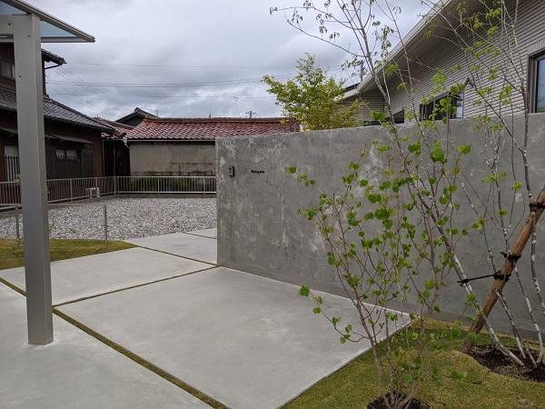 モルタル塗り仕上げ 植栽