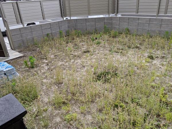 雑草 お庭 対策