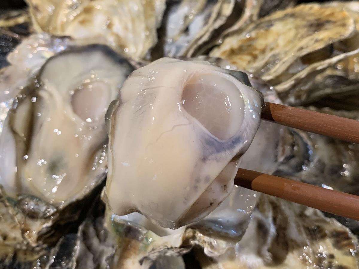 生 牡蠣 食べ 放題
