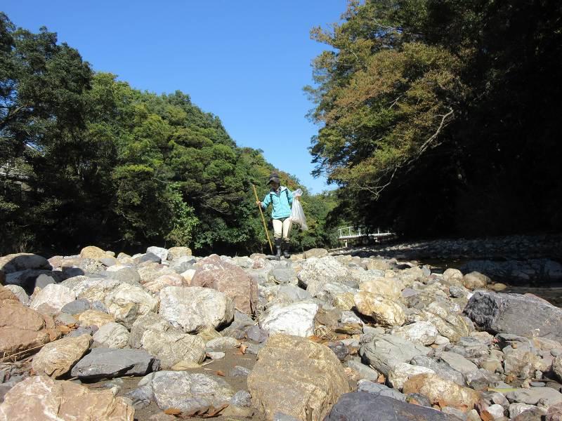 f:id:linkskomagawa:20171104093019j:plain