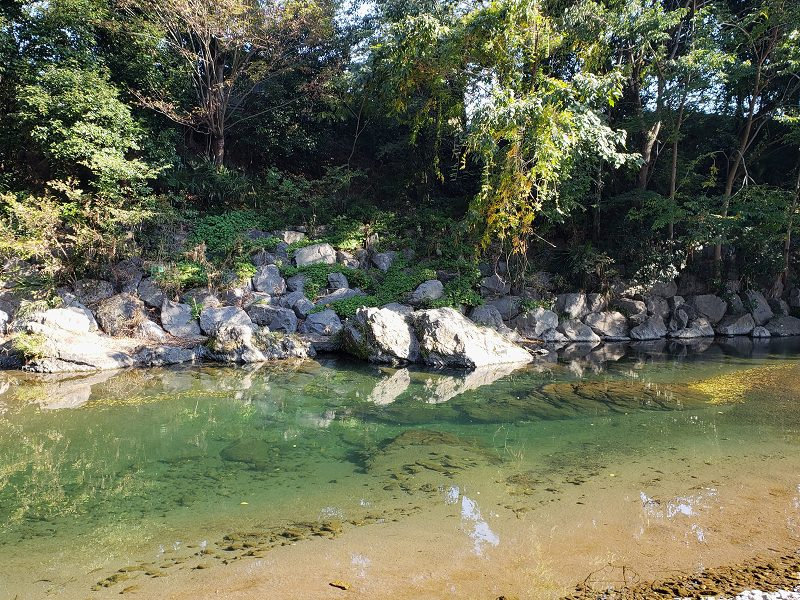 f:id:linkskomagawa:20181104001850j:plain