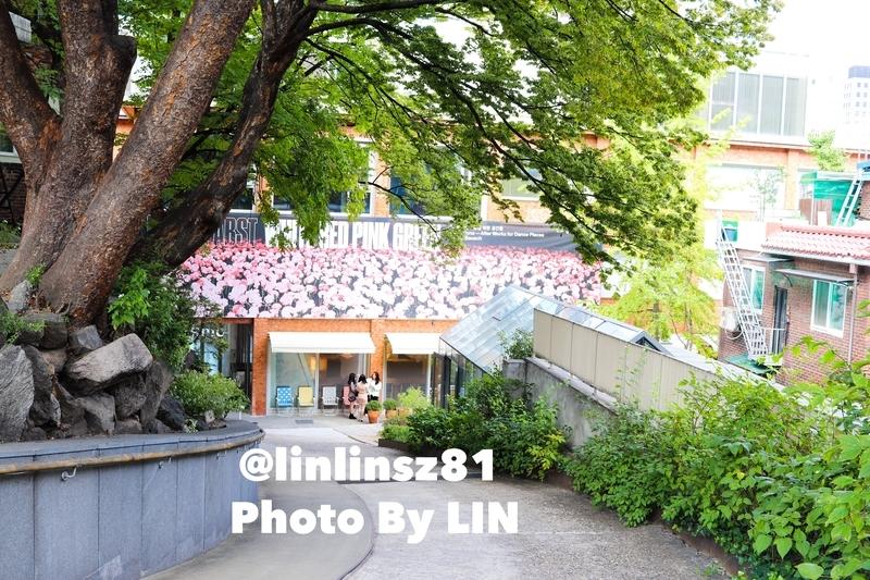 f:id:linlinsz81:20191016003212j:plain