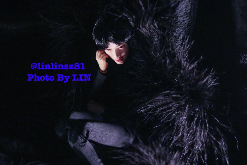 f:id:linlinsz81:20200213230111j:plain
