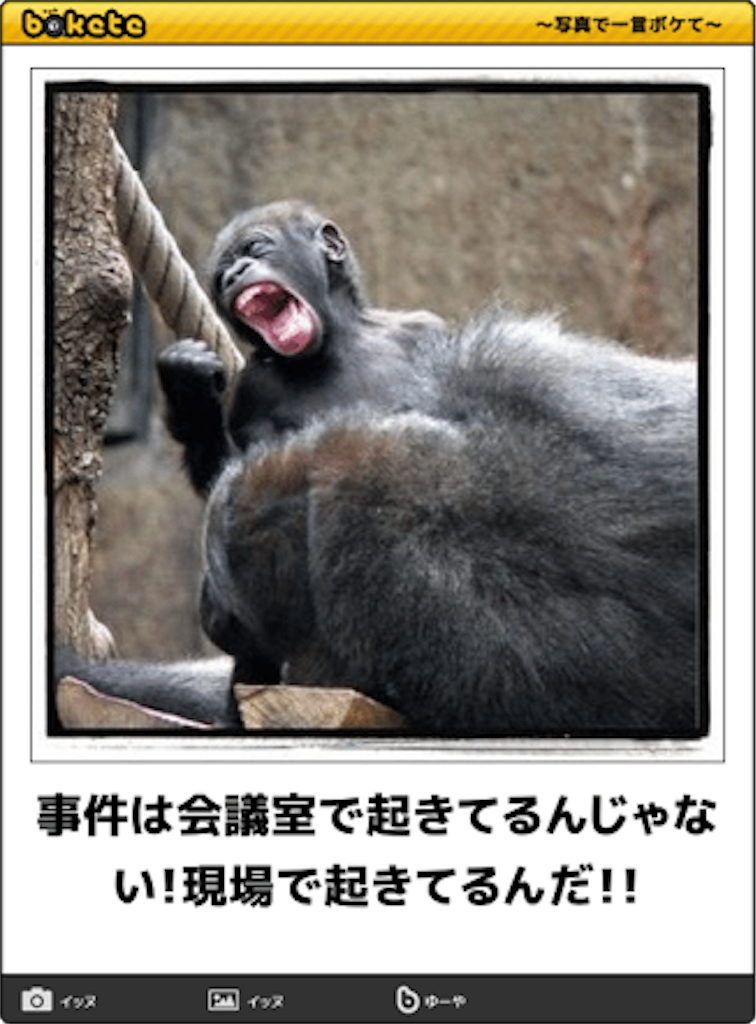 f:id:linum-yoshi:20170330071246p:image