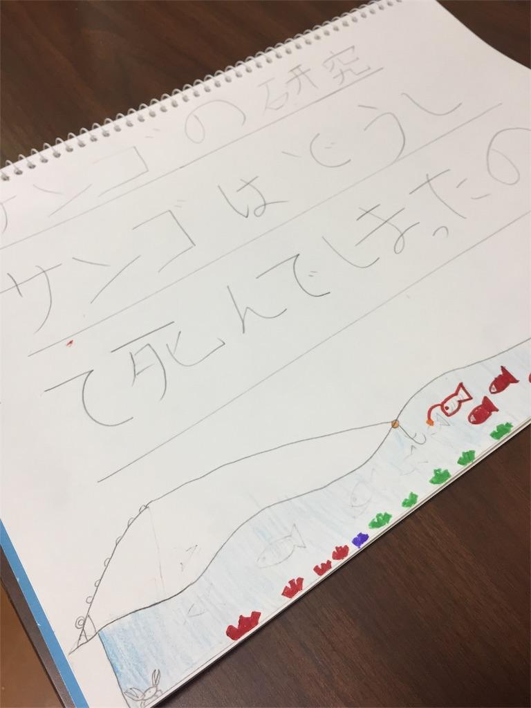 f:id:linum-yoshi:20170722221925j:image