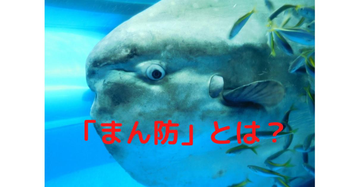 https://cdn-ak.f.st-hatena.com/images/fotolife/l/linxosaka/20210401/20210401172506.png