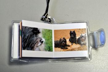 f:id:lion-dog:20100319090810j:image