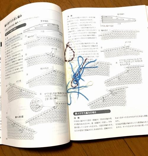 f:id:lisamori:20190126211929j:plain