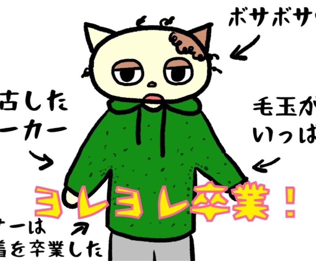 f:id:lisamori:20201112214057j:image