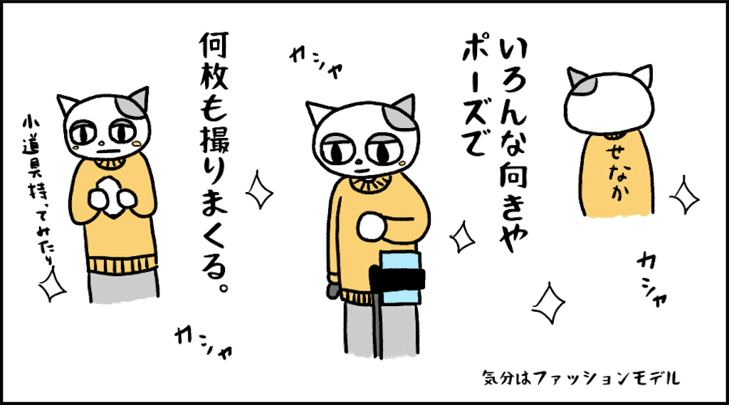 f:id:lisamori:20210208220020p:image