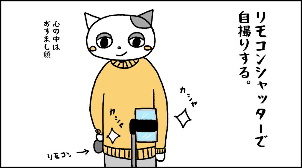 f:id:lisamori:20210208220040p:image