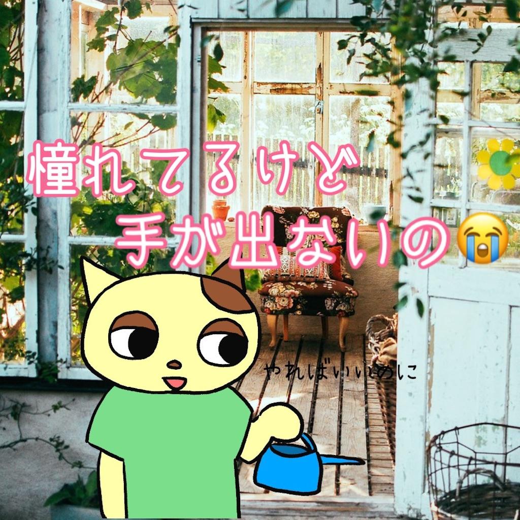 f:id:lisamori:20210613220731j:image