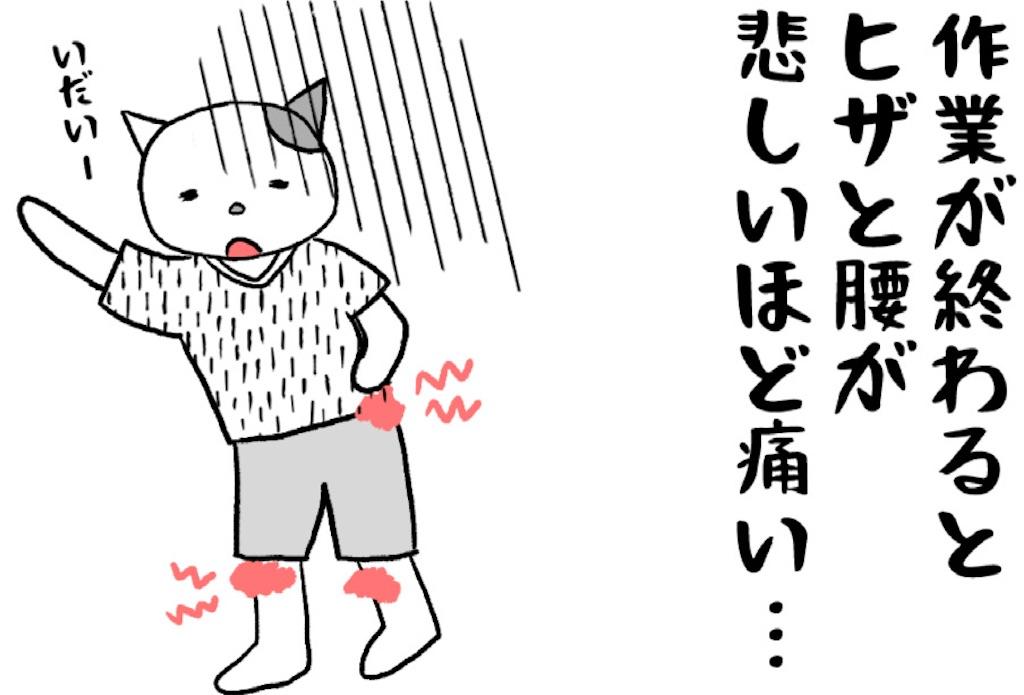 f:id:lisamori:20210801224252j:image
