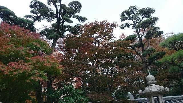 東長寺の庭園