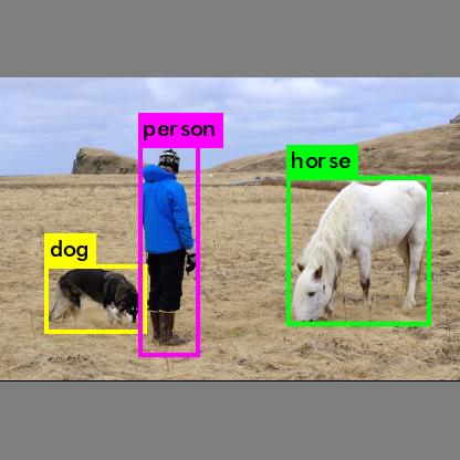 人と動物 解析後