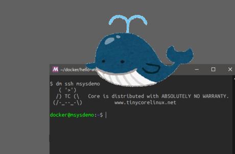 MSYS2 × Docker Toolbox