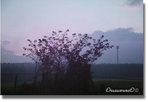 f:id:little_green:20120917075341j:image:w360:left