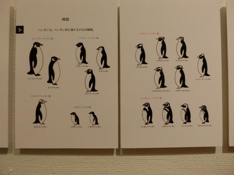 ペンギン18種