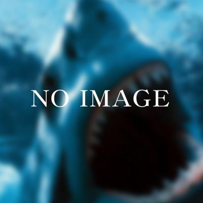 http://cdn-ak.f.st-hatena.com/images/fotolife/l/loanshark/20160420/20160420143645.png
