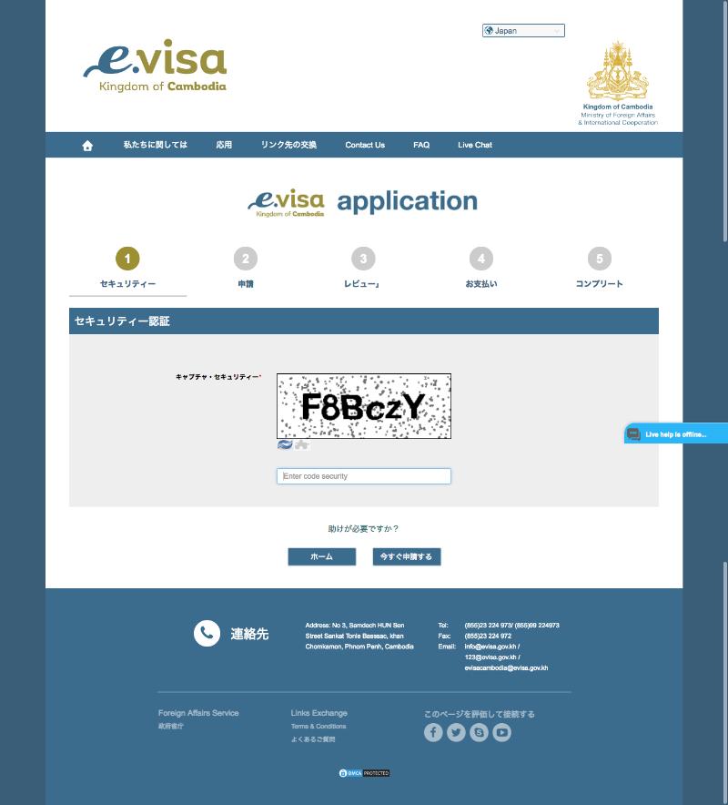 e-visaApplication2