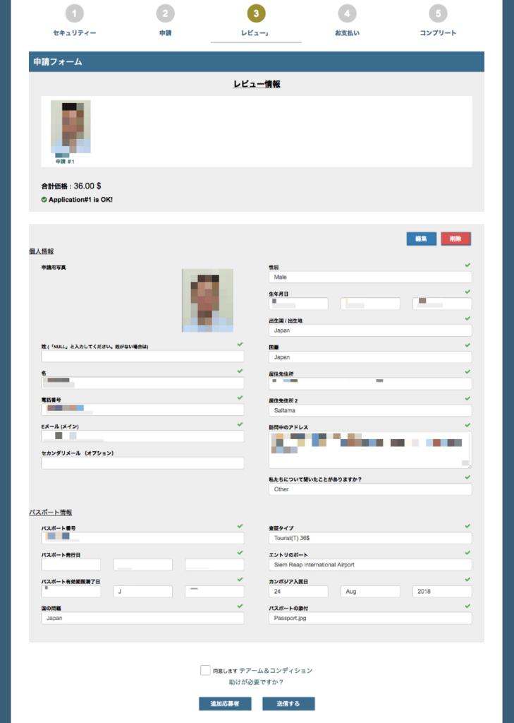 e-visaApplication5