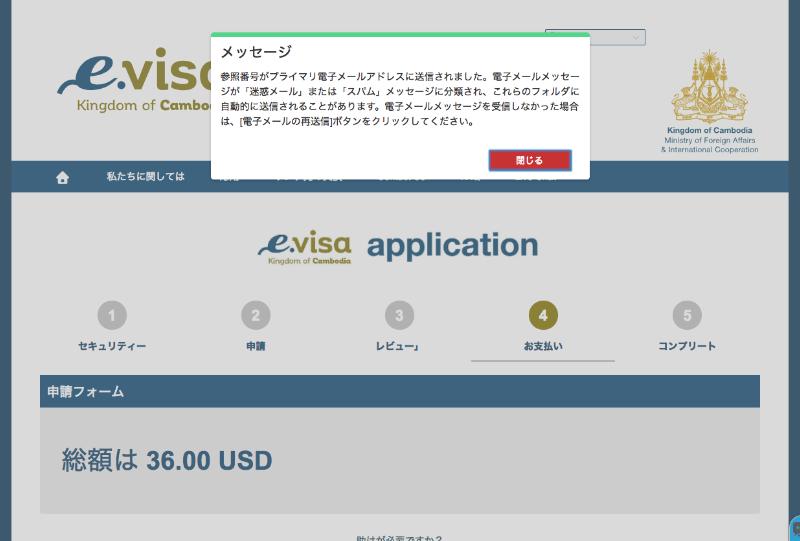 e-visaApplication6