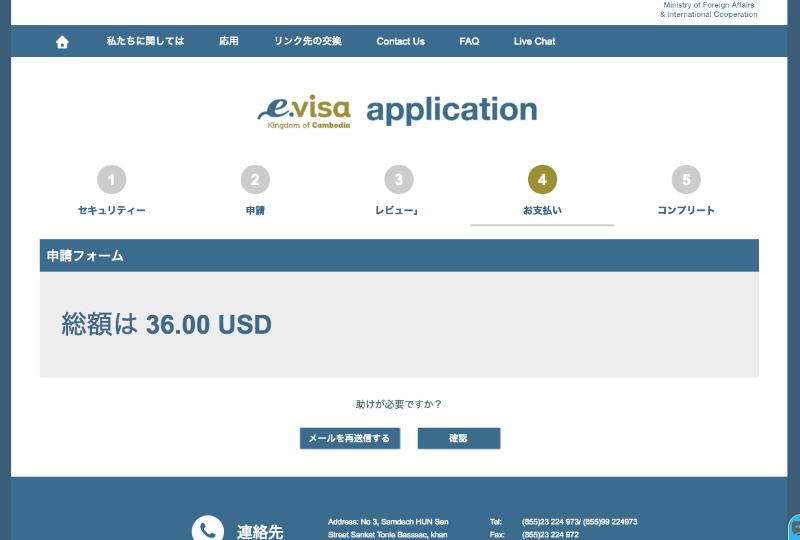 e-visaApplication7