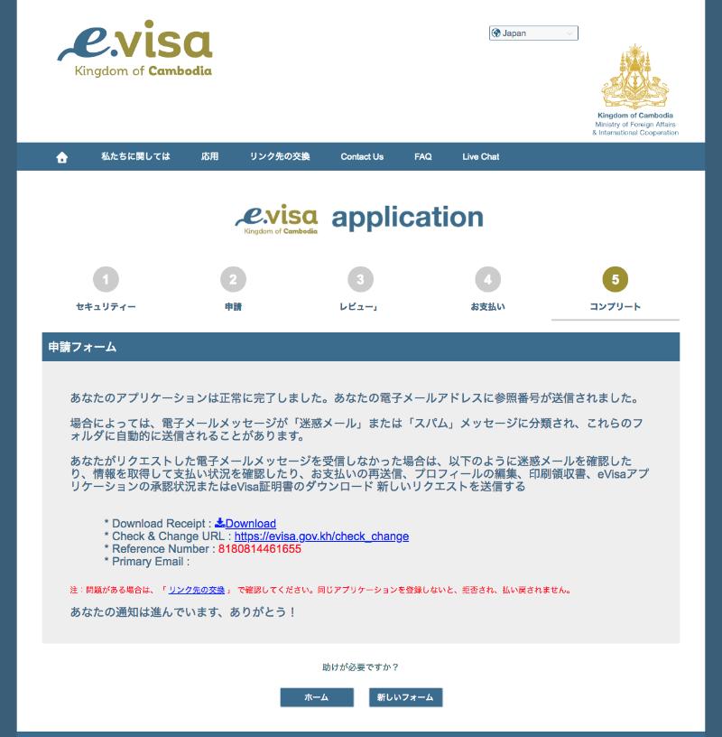 e-visaApplication10