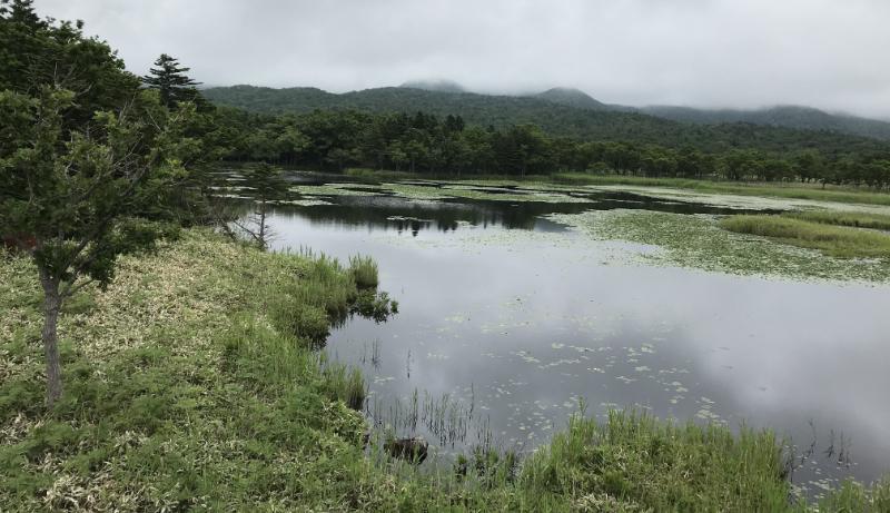 知床五湖一湖