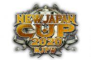 ニュージャパンカップ2020ロゴ
