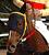 2歳優駿優勝馬 ラブミーチャン