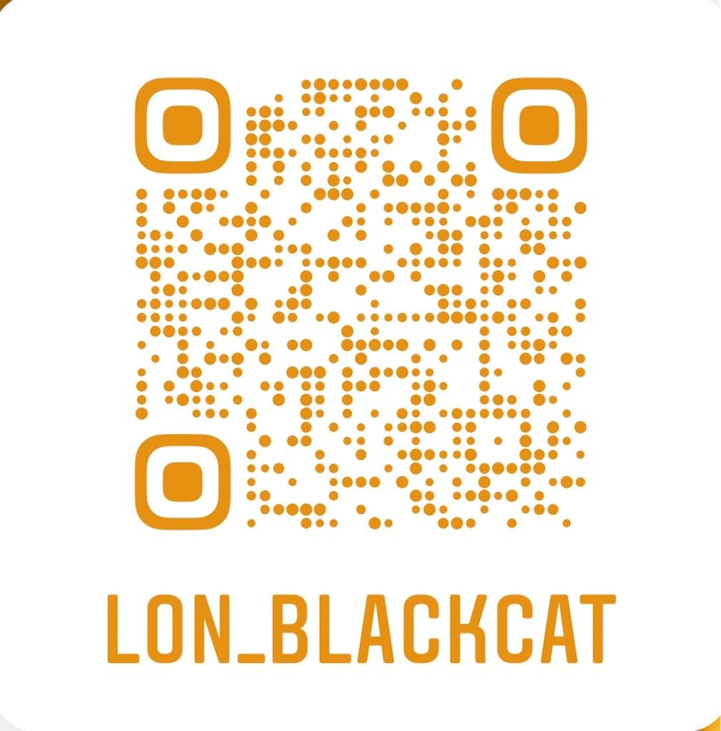 f:id:lon_blackcat:20200428225036j:image