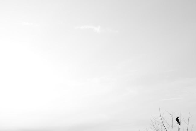 f:id:lonestartx:20140114161352j:plain