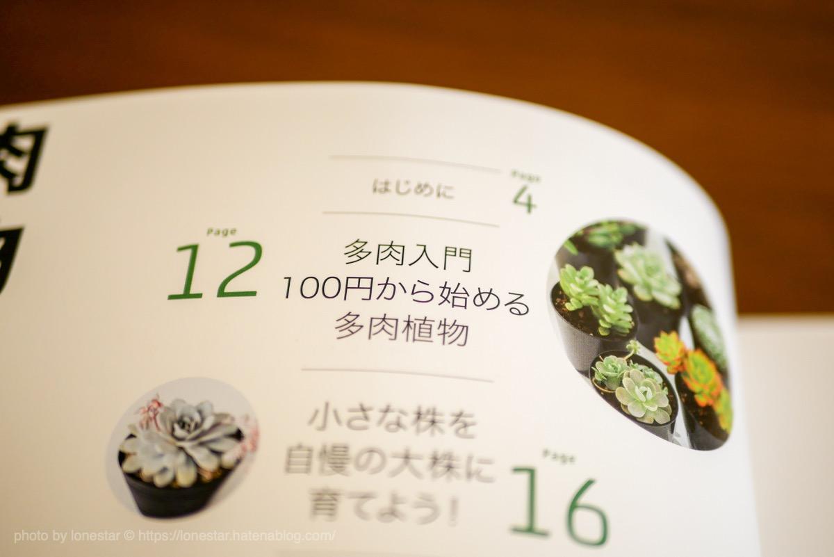 多肉植物 100円ショップ