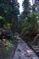 石畳の道を行く