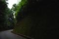 苔色の壁面